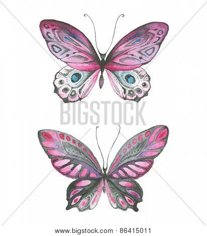 Watercolor butterflies pink, black and gray colors.
