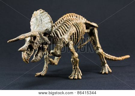 Triceratops Fossil Dinosaur Skeleton Model Toy
