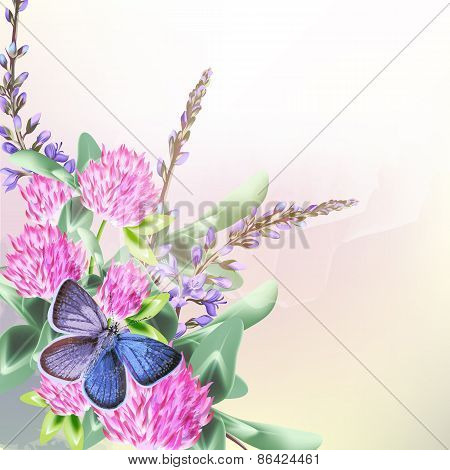 Floral Background With Field Flowers Clover And Butterfly