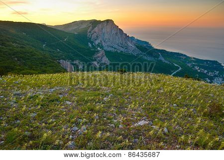 Mountains And The Field Of Yellow Flowers. Sunset.