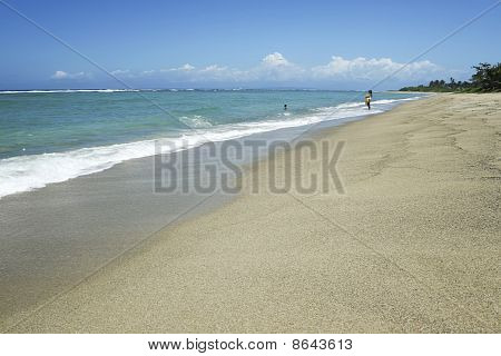 Tropical Beach South Luzon Philippines