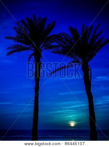 Moon In Agadir, Morocco