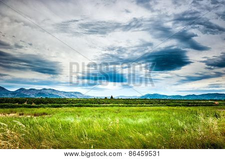 Soothing View Of The Green Meadow And Cloudy Sky