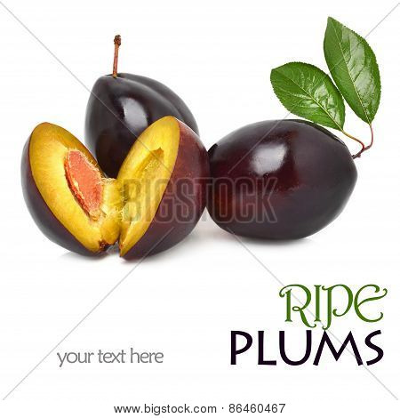 Three Sweet Plums