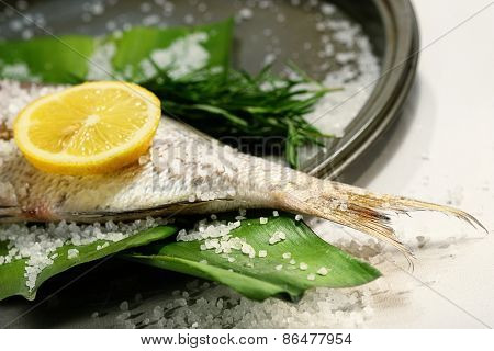 Fish tale with lemon, alt and herbs