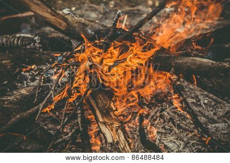 Fire Flame wooden camp burning Outdoor travel vacations