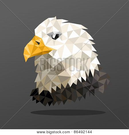 Animal Portrait With Polygonal Geometric Design Vector Illustration. Eagle