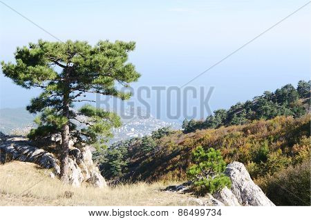 On top of Ai-Petri plateau, view of  coast, Crimea.