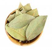 picture of bay leaf  - Bay leaves in wooden bowl - JPG