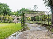 picture of creeper  - Structure bamboo roof for vine creeper plant over footpath in the park