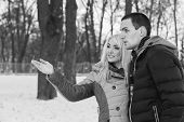 image of stroll  - Winter Park - JPG