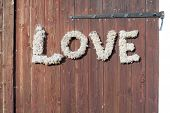 ������, ������: Wall With Love