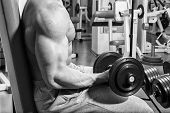 stock photo of dumbbell  - Man makes exercises dumbbells - JPG