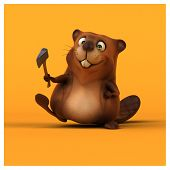 image of beaver  - Fun beaver - JPG