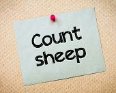foto of counting sheep  - Count Sheep Message - JPG