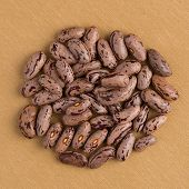 image of pinto bean  - Top view of circle of pinto beans against yellow vinyl background - JPG