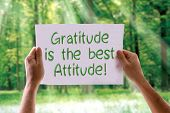 stock photo of gratitude  - Gratitude is the Best Attitude card with nature background - JPG