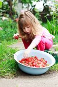 foto of strawberry blonde  - Little girl chooses and eats  ripe strawberries - JPG