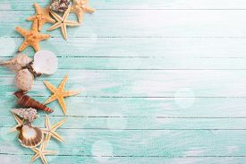 picture of sea life  - Different marine items in ray of light on turquoise wooden background - JPG