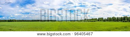Summer  Landscape A Panorama With A Field And The Blue Sky. Agriculture