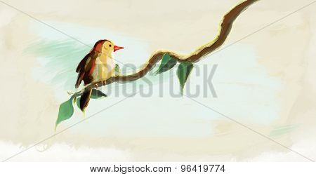 bird on the tree branch