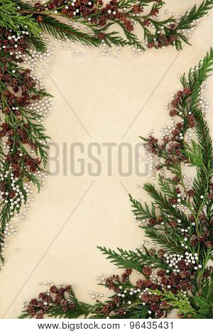 Cedar cypress abstract background border with silver ball decorations over parchment paper.