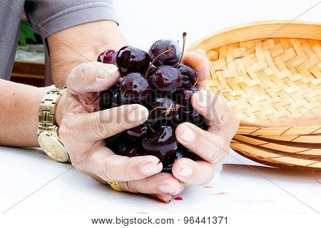 Ripen Cherries In Hands On The Table