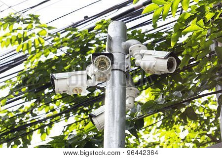 Multiple Angle Outdoor Cctv Camera On The Pole Near The Tree