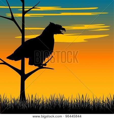 Silhouette hollered on tree