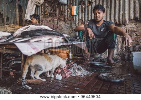 MUMBAI, INDIA - 11 JANUARY 2015: Cat eats fish leftovers while vendor looks and waits for customers. Post-processed with grain, texture and colour effect.