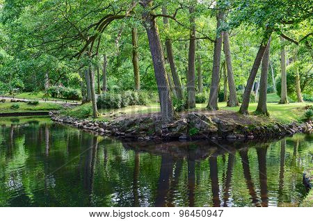 Pond In The Botanical Park, Palanga, Lithuania