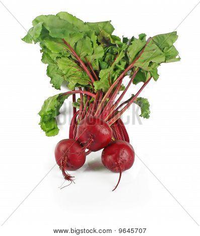 Fresh Beet Roots