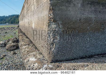 Seawall Erosion 2