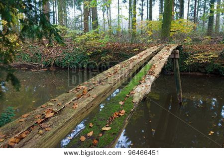 Primitive Bridge