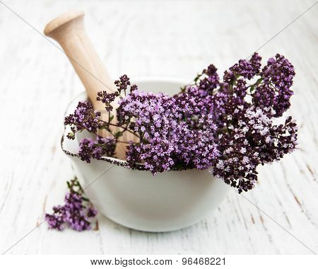 Thyme Flowers In A Mortar