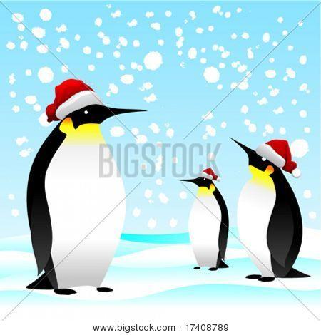 penguin with noel cap