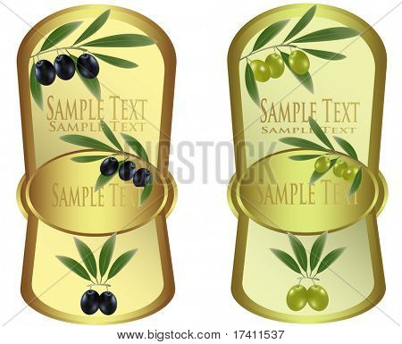 Two label with olives. Photo-realistic vector illustration.