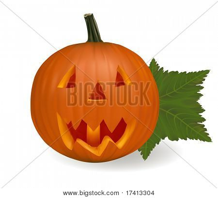 Halloween pumpkin vegetable isolated on white background. Vector