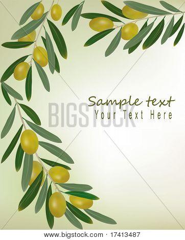 Green olives background. Illustration vector.