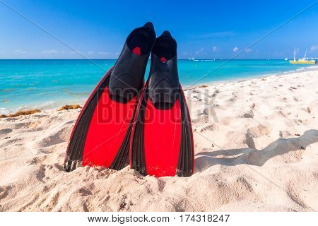 Snorkeling fins on the tropical beach of Mexico
