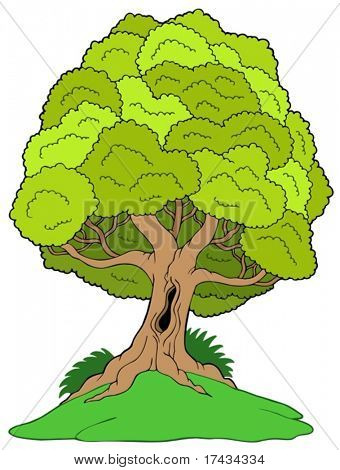 Leafy tree on hill - vector illustration.