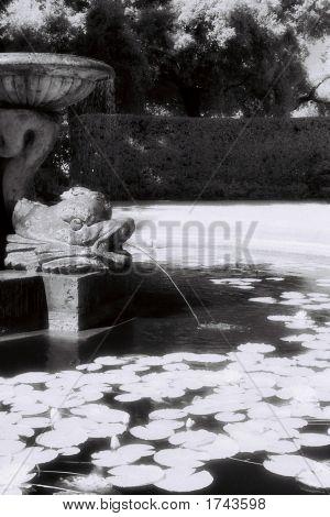 Infrared Fountain 2