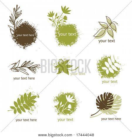 Satz von floralen Elementen