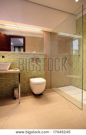 modern bathroom with glass wall