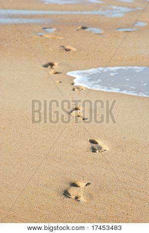 Traces on damp sand on seacoast