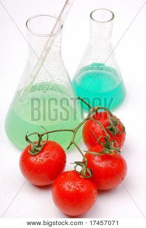 Chemical tomato. GMO food concept.