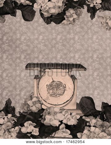 Vintage Background Backdrop Bath Scale Fantasy (Insert Sleeping Infat Into Scene!)
