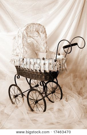 Victorian Style Photography Background (Insert Babies, Animals or Clients)