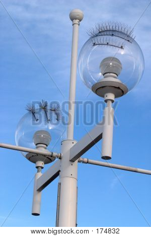 Seagull Proof Street Lamp