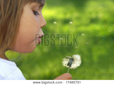 Wishes, Beautiful little girl blowing dandelion